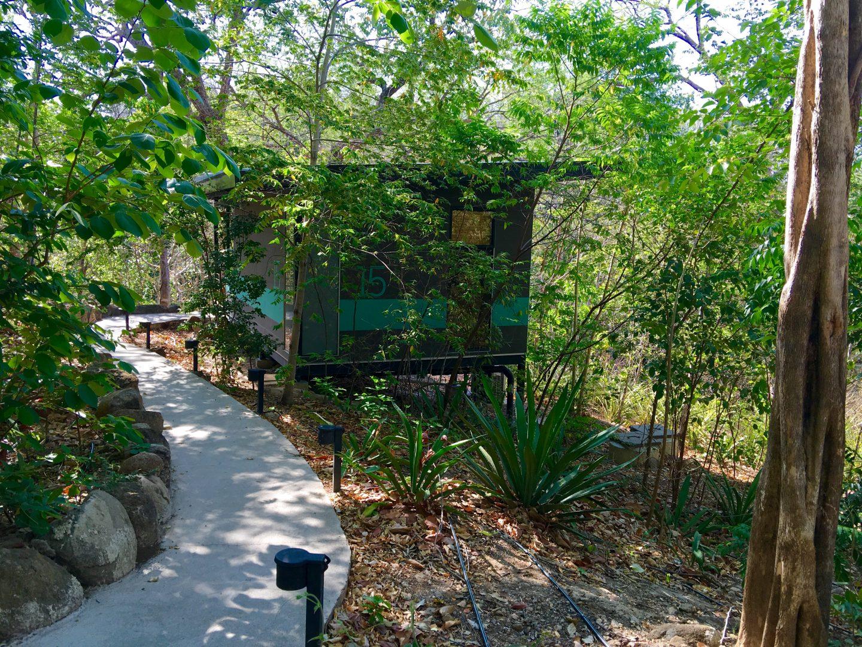 Hotel Eco Lodge Rio perdido